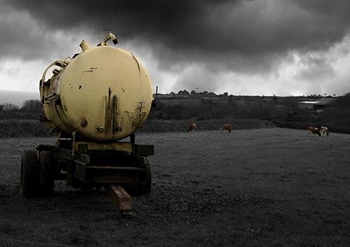 Tank of water by gib spawny