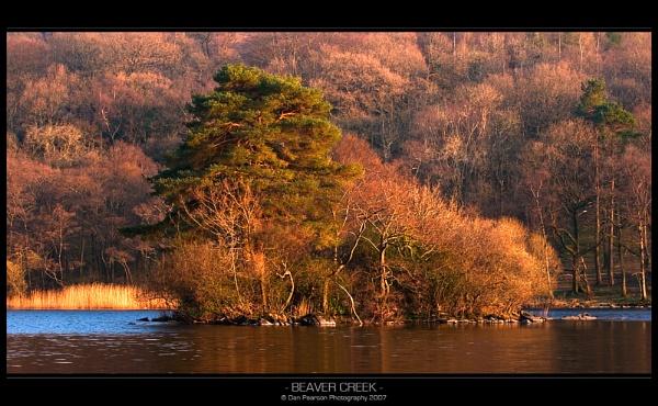 Beaver Creek by culturedcanvas