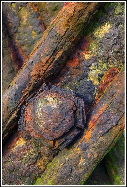 Rusty by cadman359