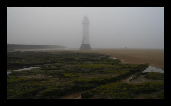 Gorillas (?) In the Mist by MrsS