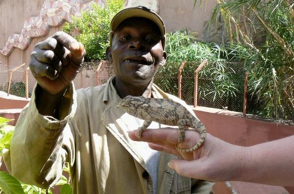 The Snake Man by Hughmondo