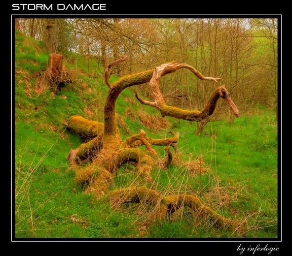 Storm Damage by inferlogic
