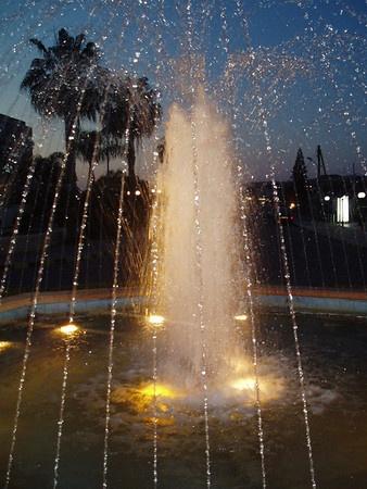 Sparkling Sprinkler by Caledonia