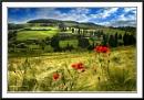 Tuscanyshire
