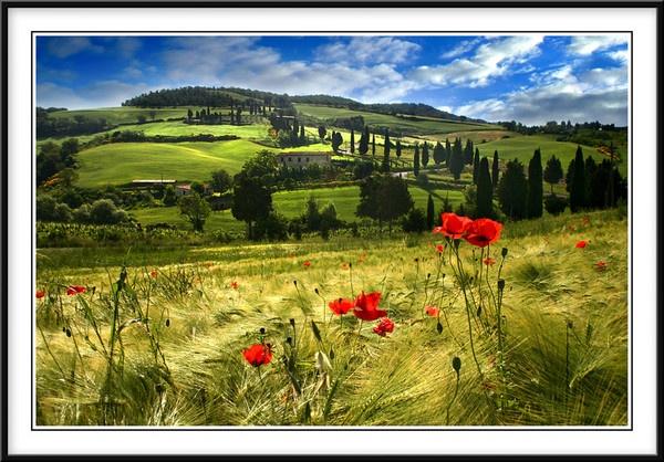 Tuscanyshire by rusmi