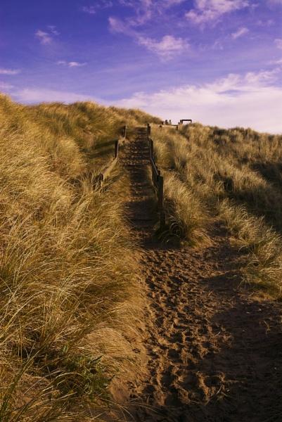 Steps by blueislander