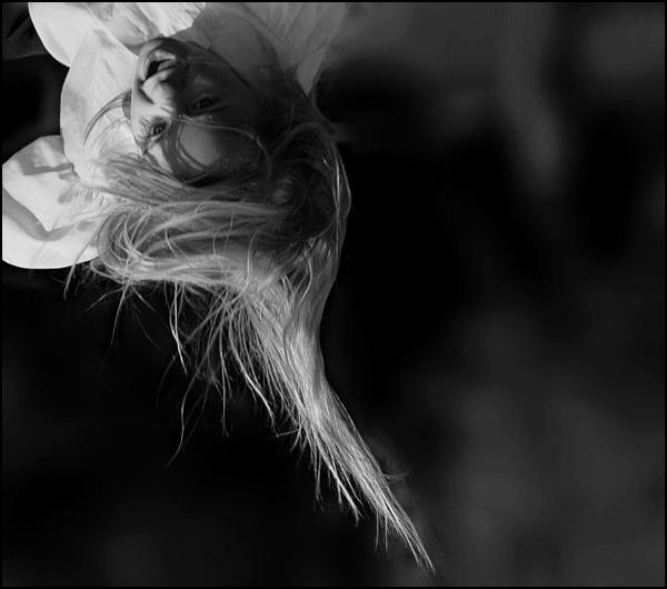 Trampoline by shortski