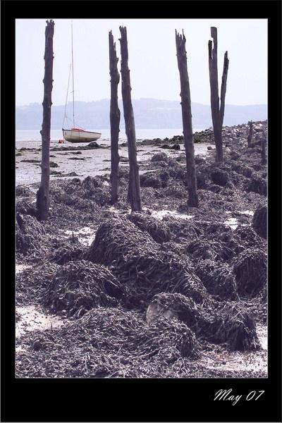 tides out by Alex_M