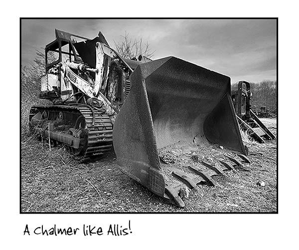 A Chalmer like Aliss! by Bulldog