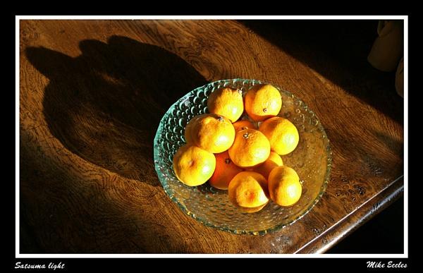 Satsuma light by oldgreyheron