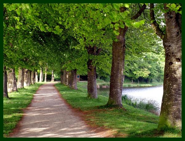 Walk by the Lake by SandraKay