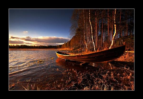 EVENING LIGHT... by Jou©o