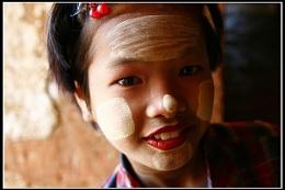 Burmese Eye