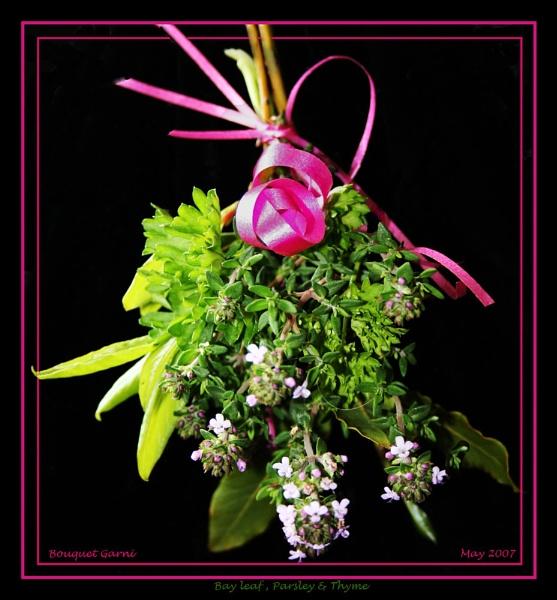 Bouquet Garni by catnappin