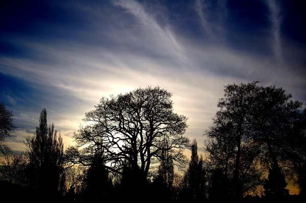 Low Winter Sun - Staffordshire by Chris_Hepburn