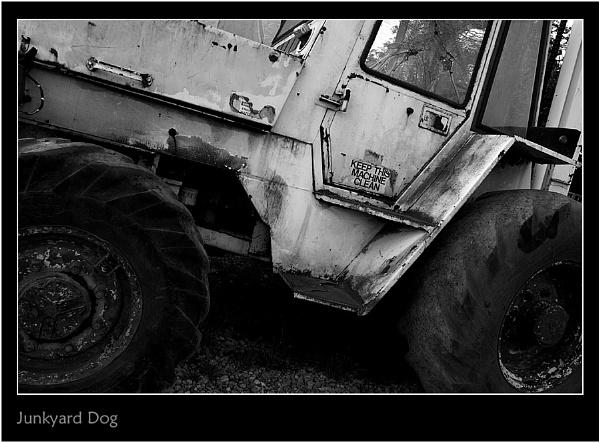Junkyard Dog by Snapper_T
