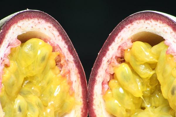 Passion Fruit by fredforsyth