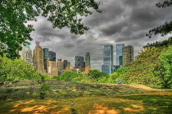 Central Park by paulBT