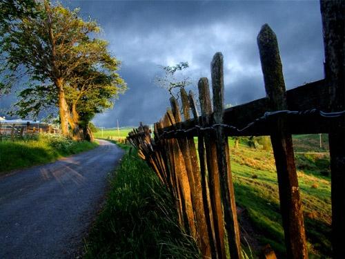 Scottish road by Juliet