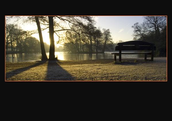 Sunrise in he Park by jobswotter
