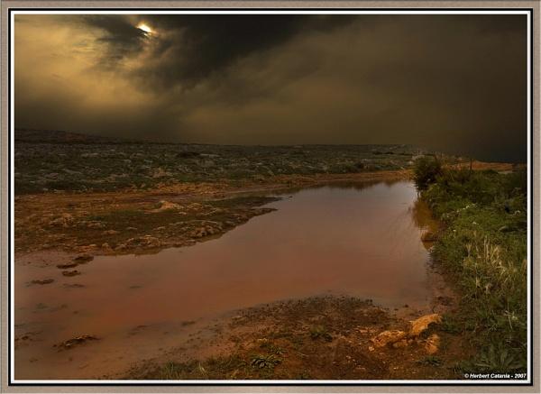 Shades of Wilderness by BertC