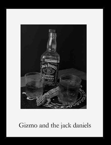 Jack Daniels no 2 by angelsj