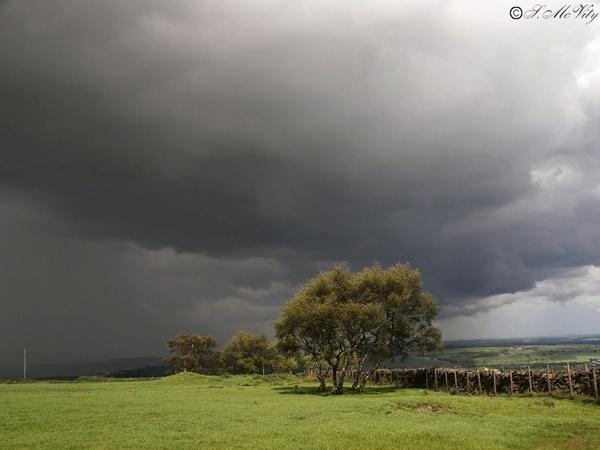 Sunshine and Showers by thundergod