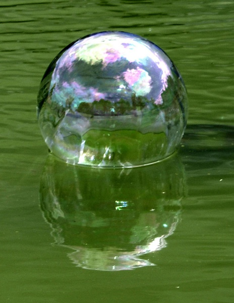 Stately home in a bubble by Nettles