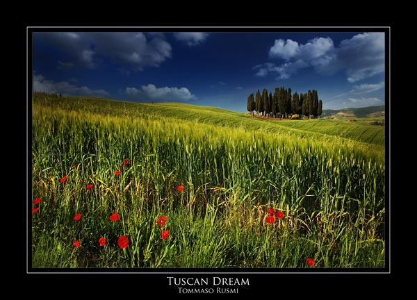 Tuscan Dream by rusmi