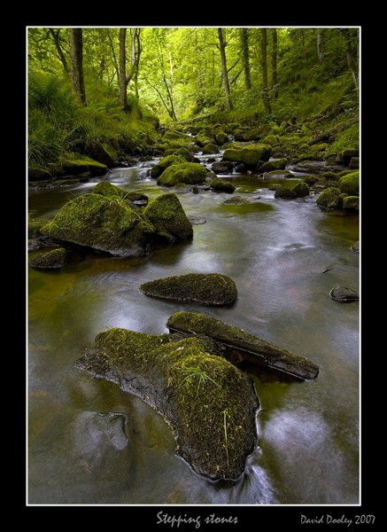 stepping stones by Dave_D78