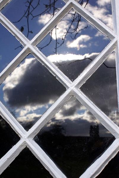 Reflections in a window by Nettles