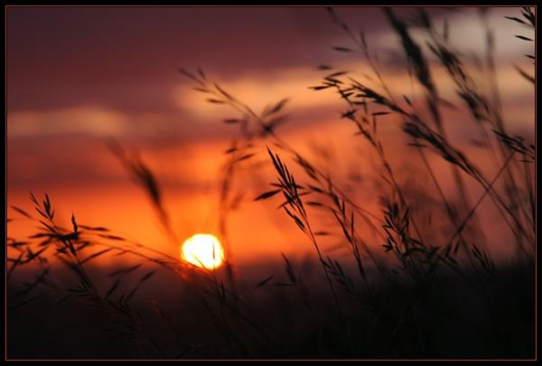 Days End by Jon_Iliffe