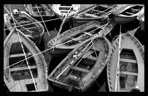 Flota by jpaul
