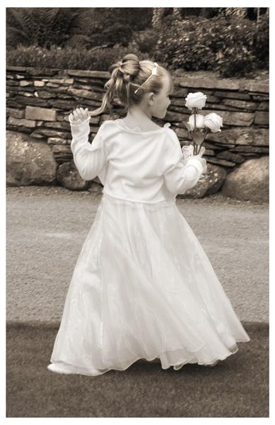 Runaway Bridesmaid by JennB