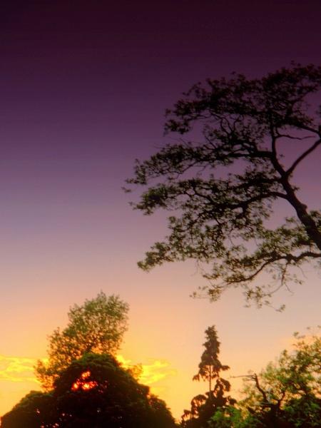 my sky!! by lonelysoul