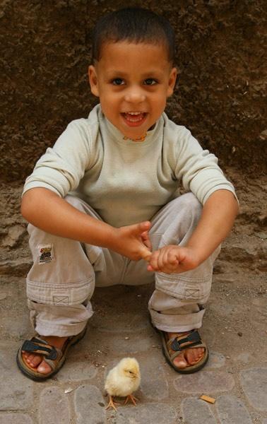 Marrakech Kid by Bucks