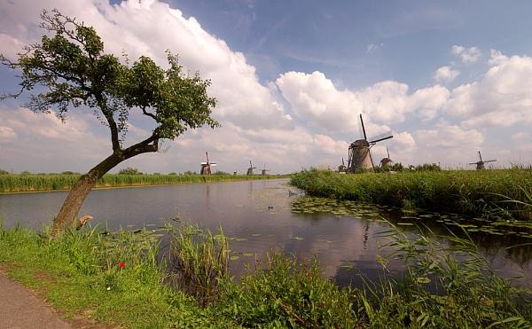 Kinderdijk (NL) by conrad