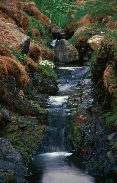 Druistone Haven, stream by ckristoff