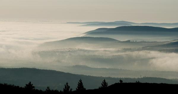 misty Deeside by hilly1