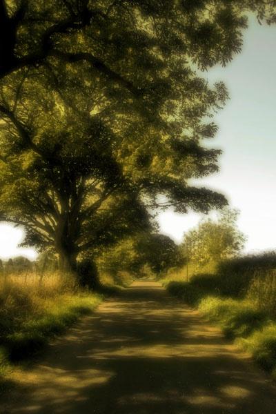 Road by graeme34