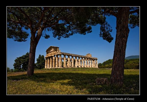 Paestum-Athenaion by limmy62