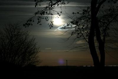 Moonlit Night by saviour99