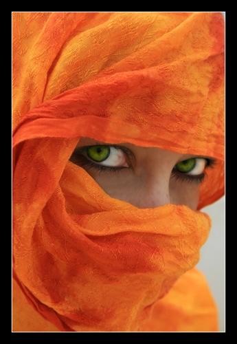 Morocco by CAVALLO
