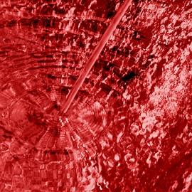 Red by EmmaStu