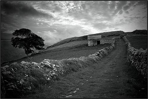 Exmoor by Zephyrphoto