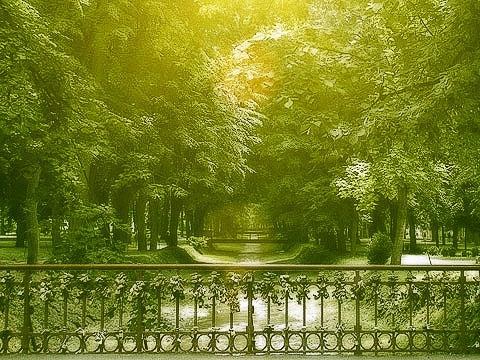 BRIDGE OF LOVE by korni