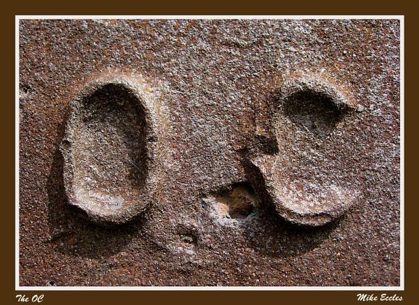 The OC by oldgreyheron