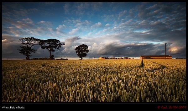 Wheat Field \'n Tracks by sut68
