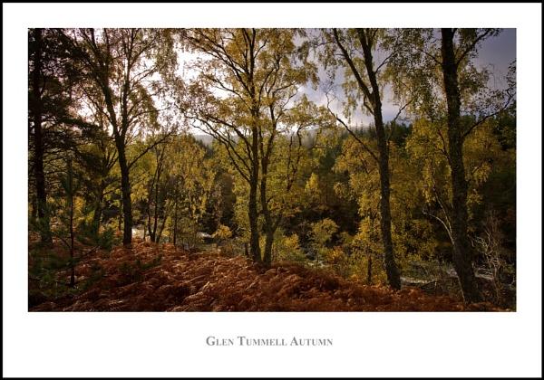 Glen Tummell Autumn... by Scottishlandscapes