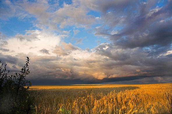 Stormy Sky by Trev_p